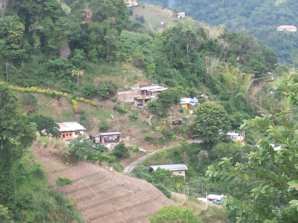 Trinidad countryside